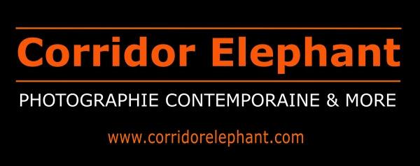 zenitude-profonde-corridor-elephant