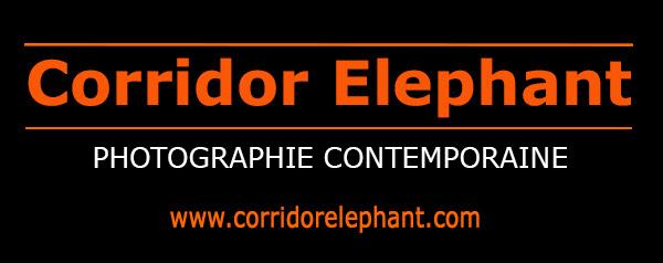 zenitude-profonde-le-mag-corridor-elephant