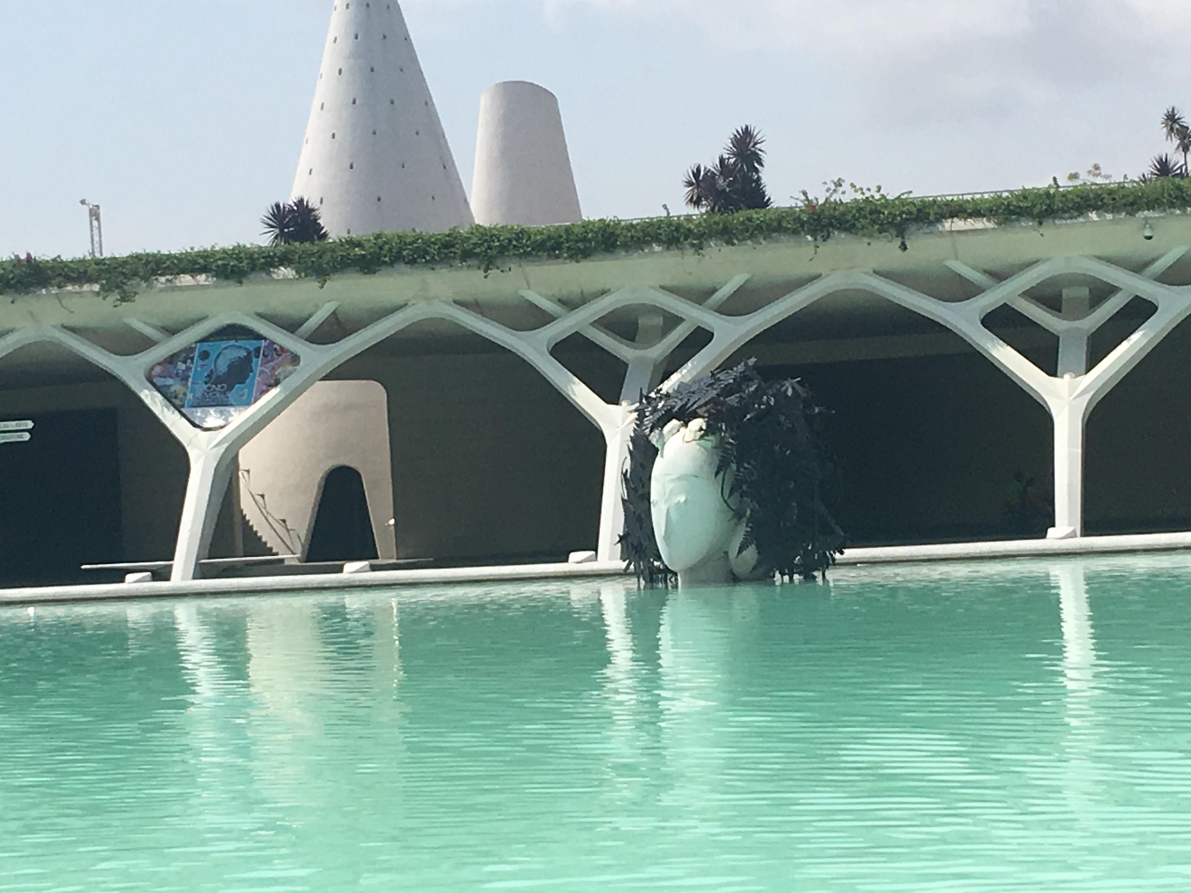 Zenitude-Profonde-le-mag-manolo-valdes-Valencia- palacio de las artes y de las sciencias