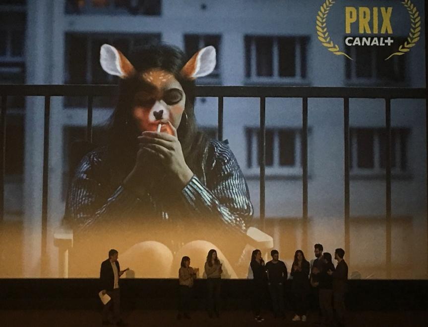 prix canal + nikon film festival 2017