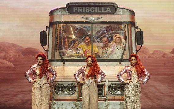 priscilla-41761-2560x1602