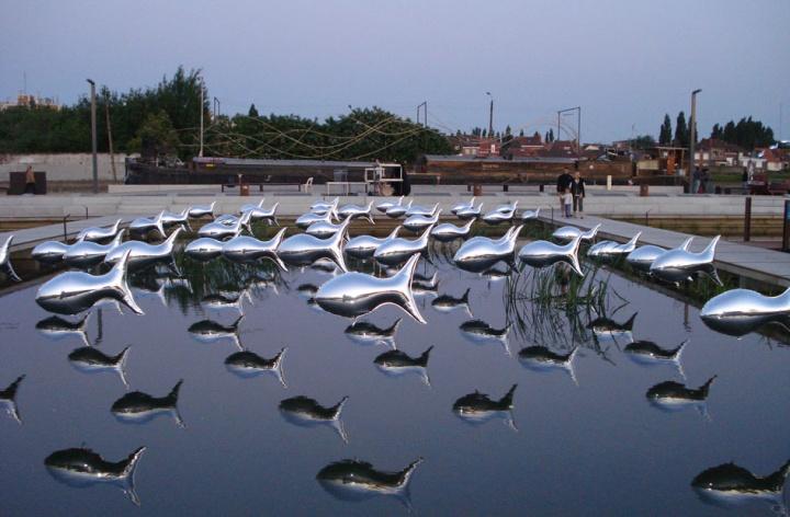 Banc de sardines 2 par Jean Pierre David